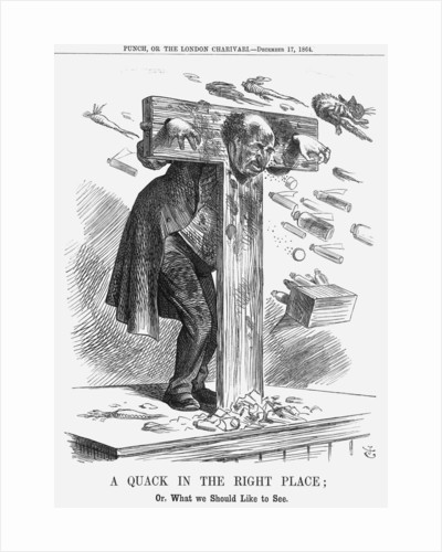 A Quack in the Right Place by John Tenniel
