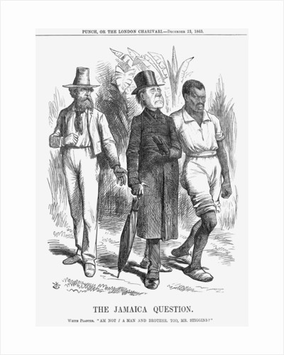 The Jamaica Question by John Tenniel