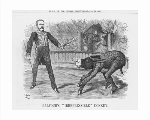Balfour's Irrepressible Donkey by Joseph Swain
