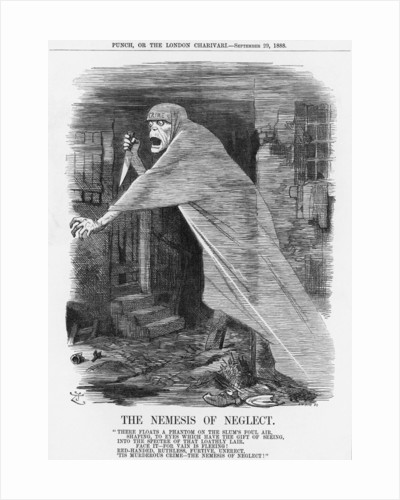 The Nemesis of Neglect by Joseph Swain