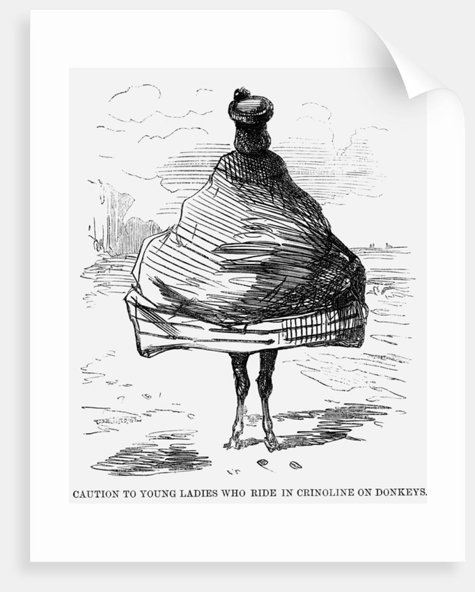 Caution to Young Ladies who ride in Crinoline on Donkeys by Anonymous