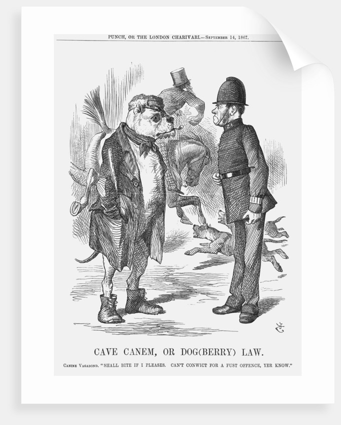 Cave Canem, or Dog(berry) Law by John Tenniel