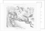 A Leap in the Dark by John Tenniel
