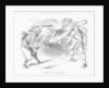 Trial by Battle by Joseph Swain