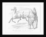 The Irish Horse; or Not Caught Yet by Joseph Swain