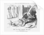 The Cat that Killed the Rat by Joseph Swain
