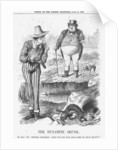 The Dynamite Skunk by Joseph Swain