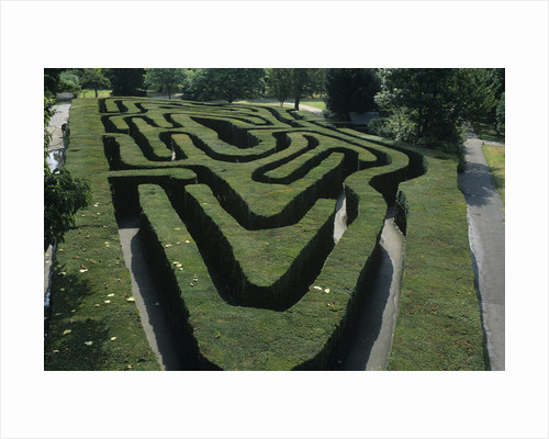 The Maze, Hampton Court Palace by Vivian Russell