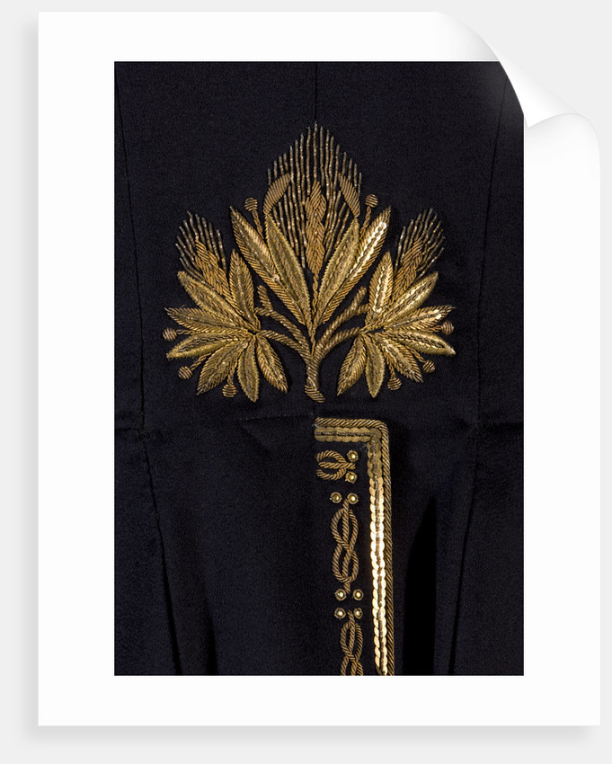 Court dress coatee, pre 1918 by Robin Forster