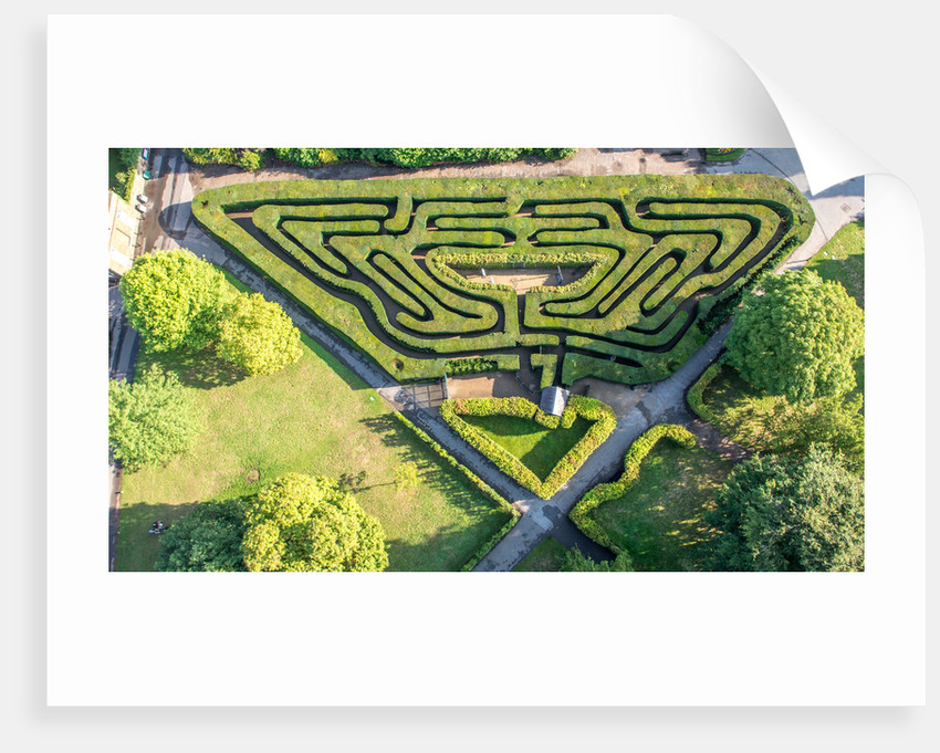 The Maze, Hampton Court Palace by Unknown