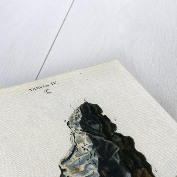 Crude white silver by Johann Michael Seligmann