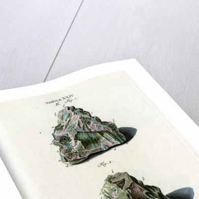 Cobalt by Johann Sebastian Leitner