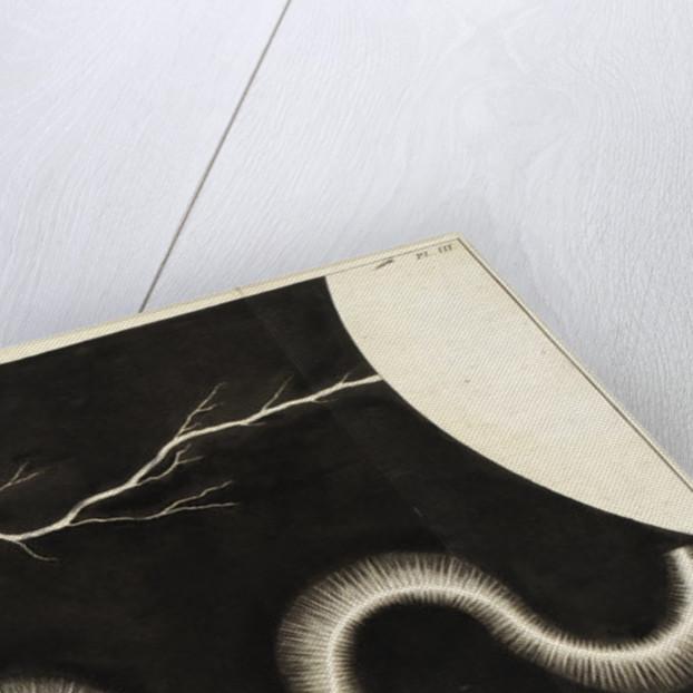 Electrical arcs Electrical arcs by C H Koning