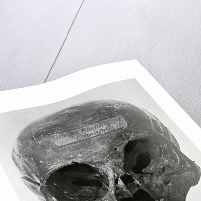 George Buchanan's skull by unknown