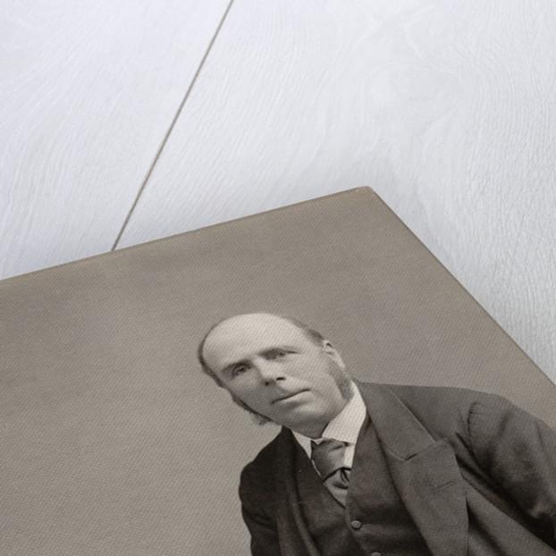 Portrait of Robert Stawell Ball (1840-1913) by Maull & Fox
