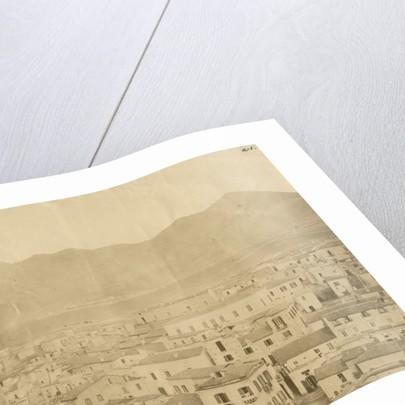 'Vulture' [earthquake damage] by Alphonse Bernoud Grellier