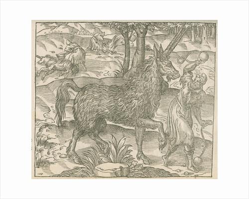 'Figure du Pirassoipi, espece de Licorne d'Italie' by Anonymous