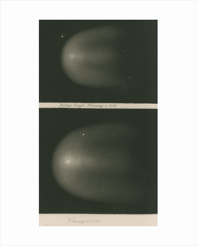 Halley's Comet, 5 and 10 February 1836 by James Basire III