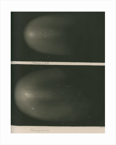 Halley's Comet, 7 and 12 February 1836 by James Basire III