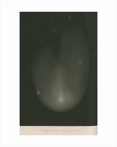 Halley's Comet, 14 February 1836 by James Basire III