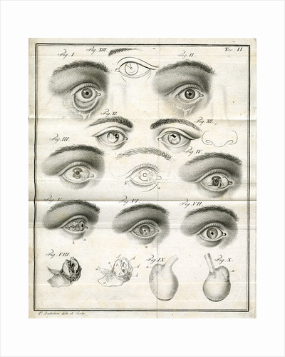 Diagrams of the eye by Faustino Anderloni