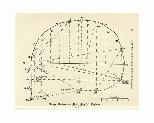 Measurements of George Buchanan's skull by unknown