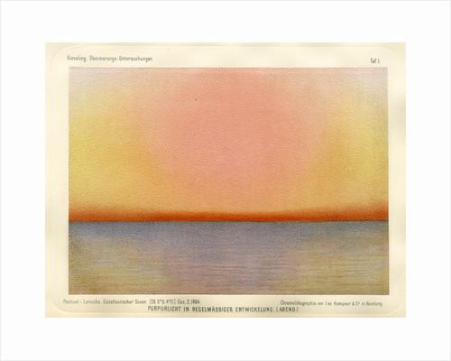 Purple light, evening by Leo Krauss and Company