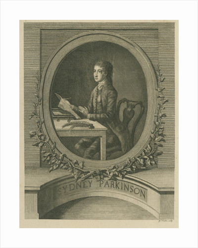 Portrait of Sydney Parkinson (1740-1771) by James Newton