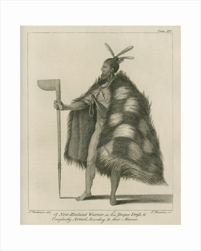 A New Zealand Warrior in his Proper Dress by Thomas Chambers