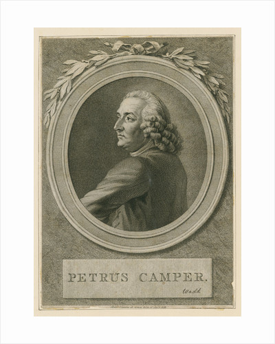 Portrait of Pieter Camper (1722-1789) by Reinier Vinkeles