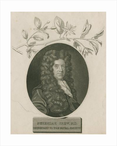 Portrait of Nehemiah Grew (1641-1712) by James Newton