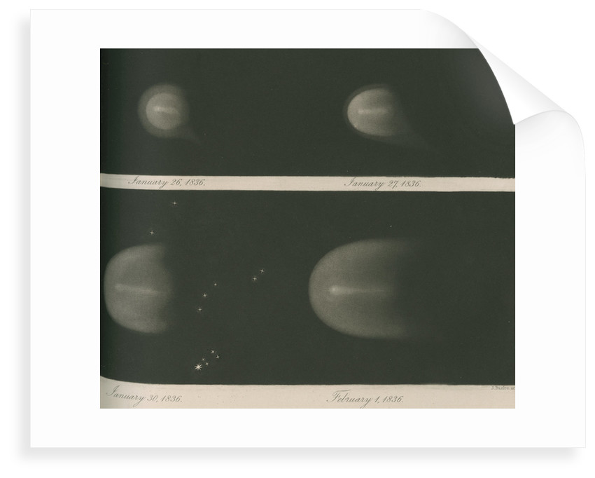 Halley's Comet, January-February 1836 by James Basire III