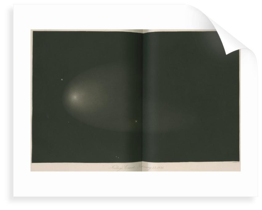 Halley's Comet, 23 February 1836 by James Basire III