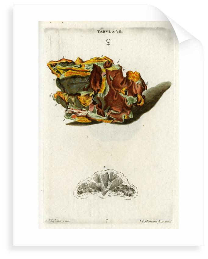 Yellow Copper Pyrites by Johann Michael Seligmann