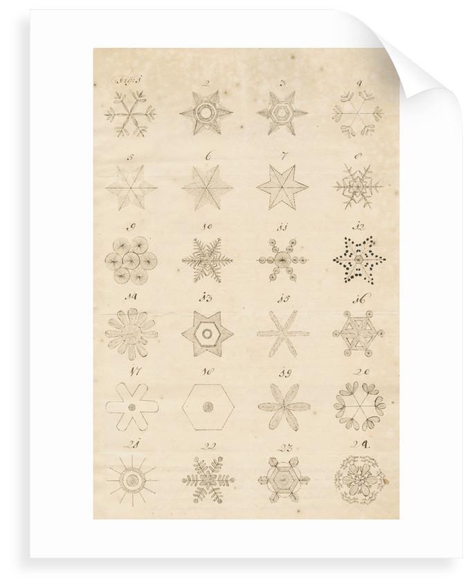 Snowflakes by Leonard Stocke