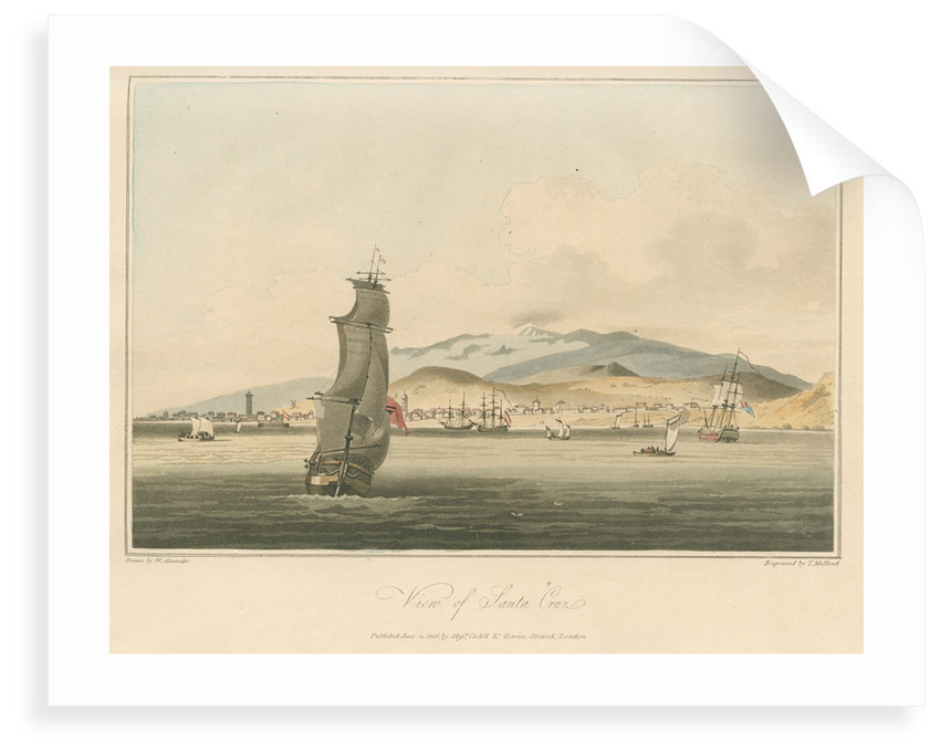 'View of Santa Cruz' by Thomas Medland