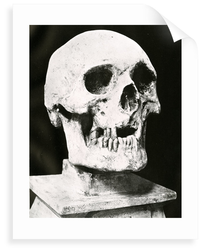 Robert the Bruce's skull by unknown