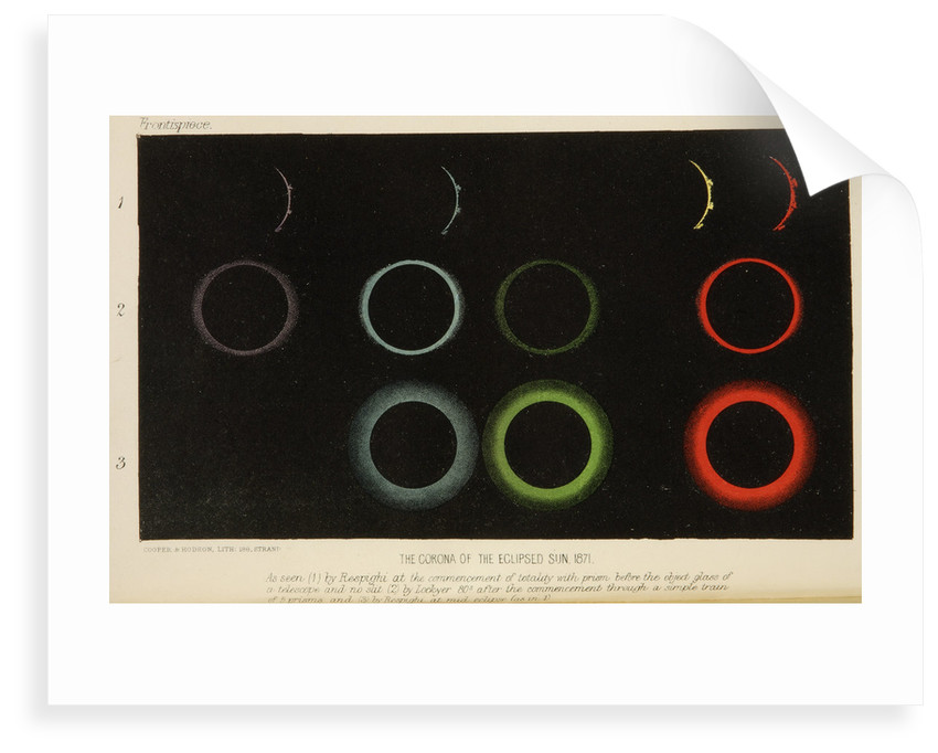Corona of the eclipsed Sun, 1871 by Cooper & Hodson