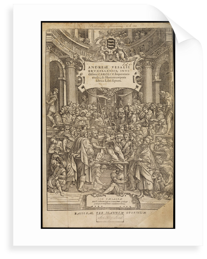 Title page of 'De humani corporis fabrica' by Studio of Titian