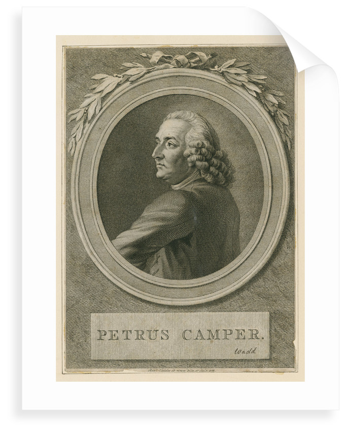 Portrait of Pieter Camper (1722-1789) by Reinier Vinkeles