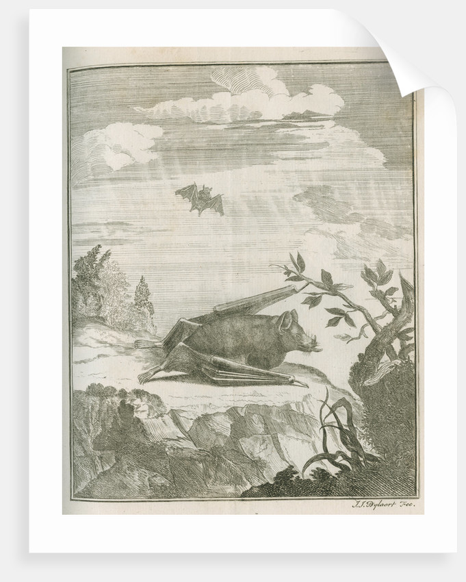 'Vespertilio Soricinus' [Greater spear-nosed bat] by Johann Jacob Bylaert
