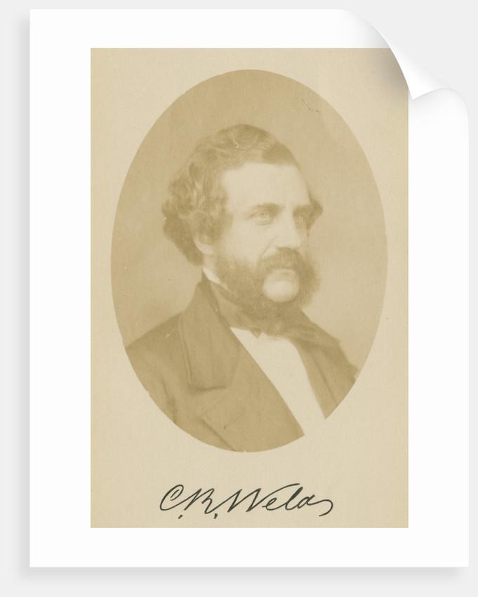 Portrait of Charles Richard Weld (1813-1869) by John Jabez Edwin Mayall