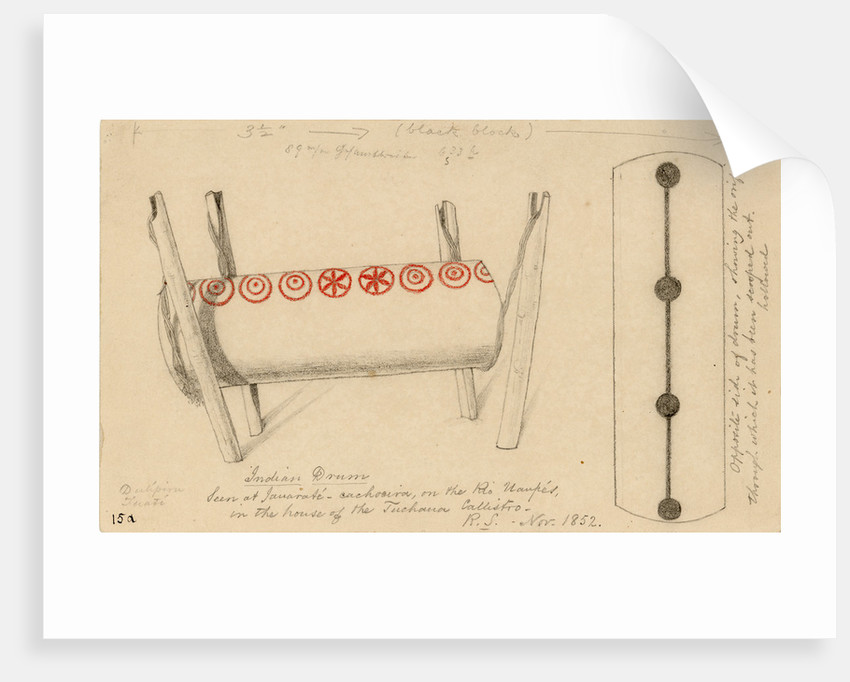 Two views of an Indian drum by Richard Spruce