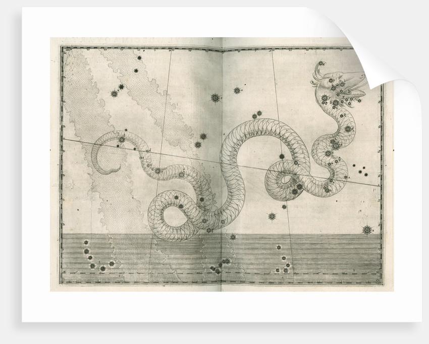 Constellation of Serpens by Alexander Mair