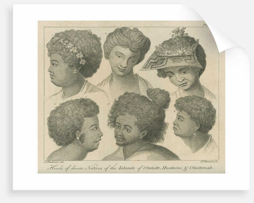 'Heads of divers Natives of the Islands of Otaheite, Huaheine, & Oheiteroah' by Thomas Chambers