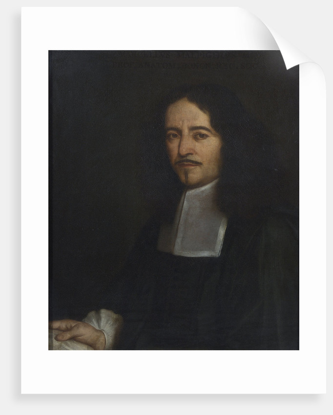Portrait of Marcello Malpighi (1628-1694) by unknown