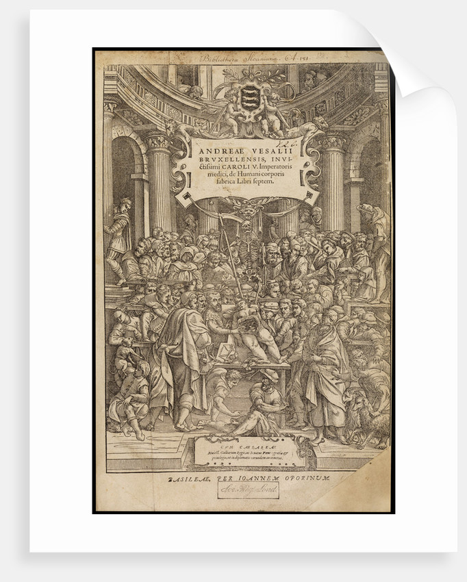 Title page of 'De humani corporis fabrica' by Studio of Titian