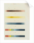 Red, blue and yellow spectra, with the solar spectrum by William Home Lizars