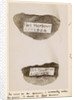 Australian flint tools by The Crown Studios