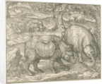 'Figure du combat du Rhinoceros contre l'Elephant' by unknown
